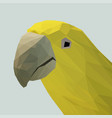 polygonal yellow-green parrot on a stand vector image vector image
