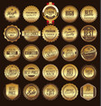 retro vintage golden badge and label collection vector image vector image