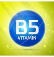 Vitamin B5 icon vector image vector image
