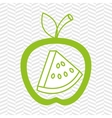 apple fruit with watermelon isolated icon design vector image vector image