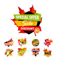 autumn or fall sale discount banners shop vector image