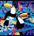 toucans in the jungle vector image vector image