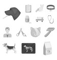 veterinary clinic monochrome icons in set vector image vector image