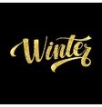 Winter Card Golden Shiny Glitter Lettering vector image