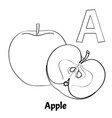 alphabet letter a coloring page apple vector image vector image