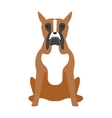 Angry flat dog pet and dog vector image vector image