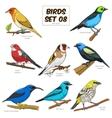 bird set cartoon colorful vector image vector image