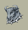 bulls head in a studded collar monocolor freehand vector image