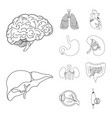 design body and human icon collection vector image vector image