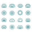 abstract lotus flower icons vector image vector image