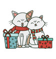 cute couple cat with gifts celebration merry vector image vector image