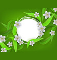 floral banner with white apple or cherry blossoms vector image