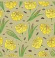 seamless parten with a plant acorus calamus vector image vector image