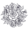 elegant hand drawn graphic bouquet with rose vector image vector image