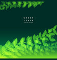 nature background with bright green leafs vector image vector image
