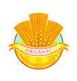 Organic wheat flour label vector image