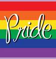 pride on rainbow flag vector image