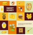 Sweet Honey Icons Set vector image vector image