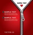 zip red vector image vector image