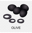 olive icon isometric style vector image