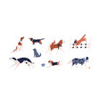 set different dog flat vector image vector image