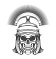 skull in rome empire centurion helmet vector image vector image