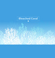 coral bleaching vector image vector image