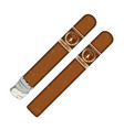 cuban cigars with labels vector image
