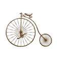 Old fashioned bicycle vector image vector image
