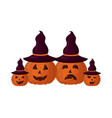 set halloween pumpkins with hat witch isolated vector image