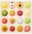 set of fruit halves icons vector image vector image