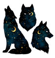 set of wolf silhouettes with gold crescent moon vector image vector image