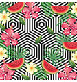 tropical flower and watermelon with abstract vector image vector image