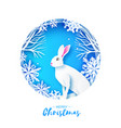 white rabbit in snowy frame merry christmas vector image vector image