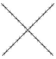 barbed wire design vector image vector image
