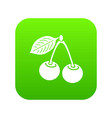 cherry icon green vector image