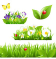 Flowers With Grass Butterfly And Ladybug vector image vector image