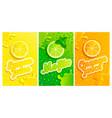 set of fresh lemonmojitoorange juices vector image vector image