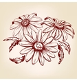 daisy hand drawn llustration sketch vector image vector image