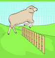 pop art background the sheep jumps over the fence vector image