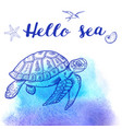 sea turtle on a blue background vector image vector image