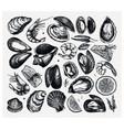 seafood collection hand drawn fish shellfish vector image vector image