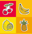 stickers hand drawn fruits in doodle style on vector image