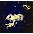 Zodiac Cancer is the starry sky vector image vector image