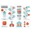 Hydroponic gardening vector image
