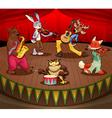 musician animals on stage