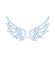 pair monochrome wide open angel wings vector image vector image