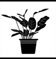 plant in a pot in simple style vector image vector image