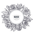 vintage elegant frame with graphic rose flowers vector image