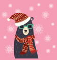 christmas a bear in a hat and vector image